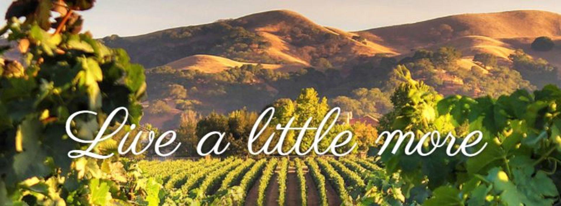 Wine Enthusiast names Livermore the Birthplace of Modern California Wine