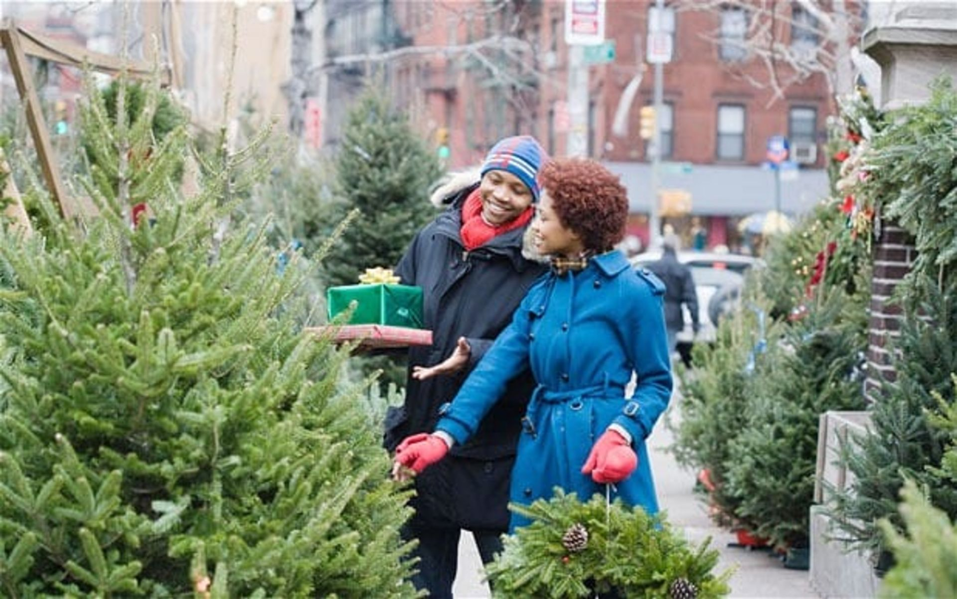 How to Buy the Perfect Christmas Tree