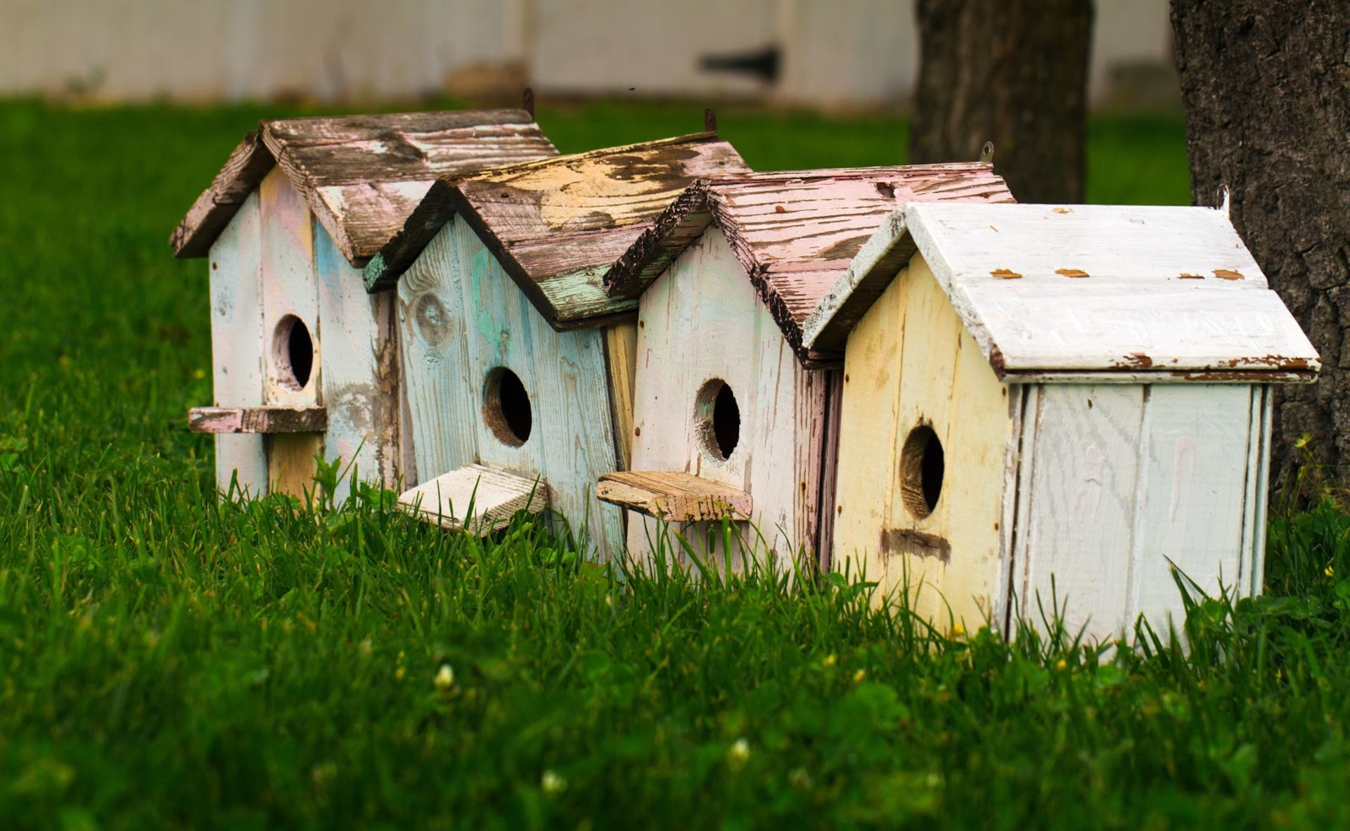 How to Downsize Your Home, Not Your Life