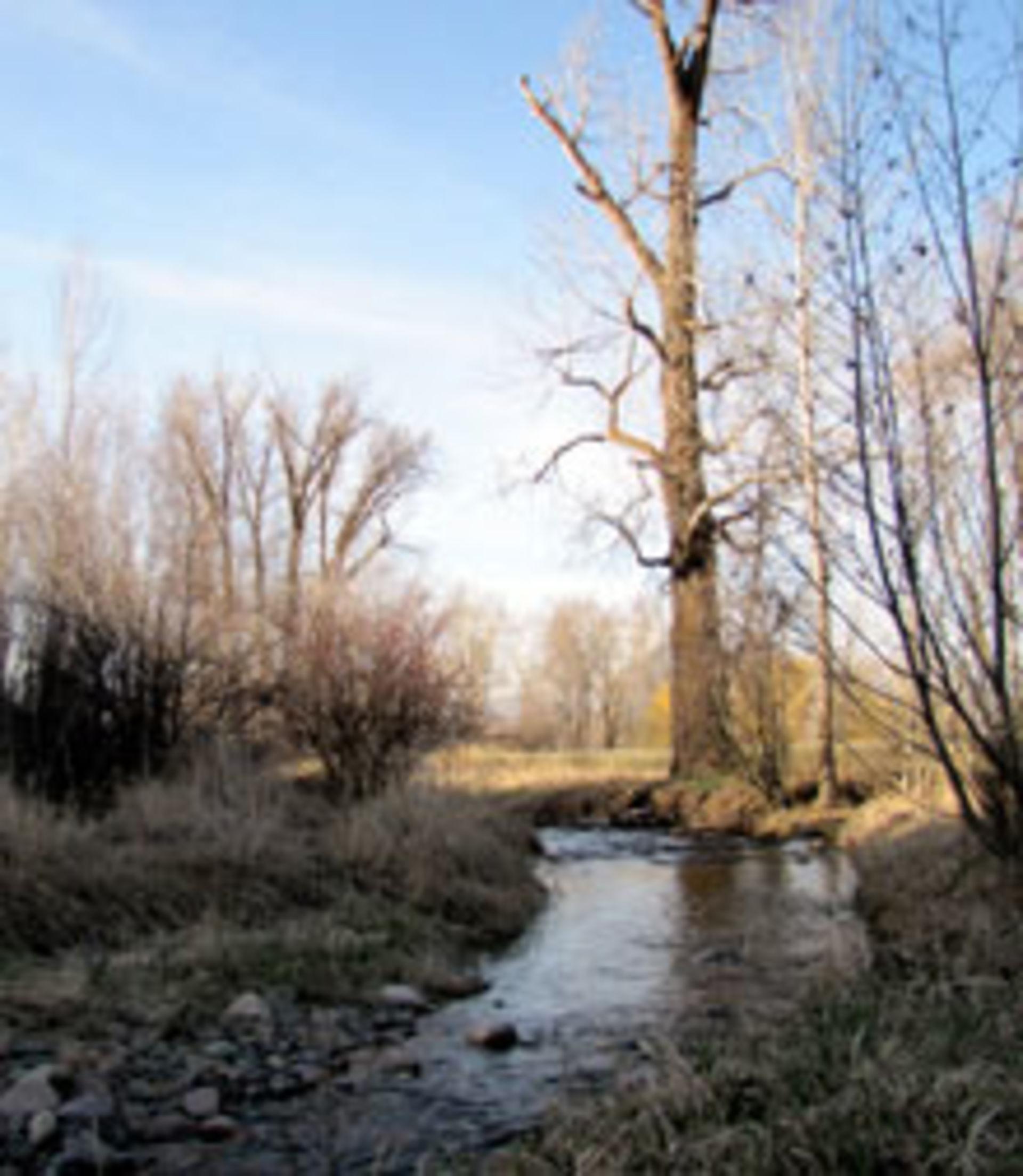 Grant Creek – Butler Creek
