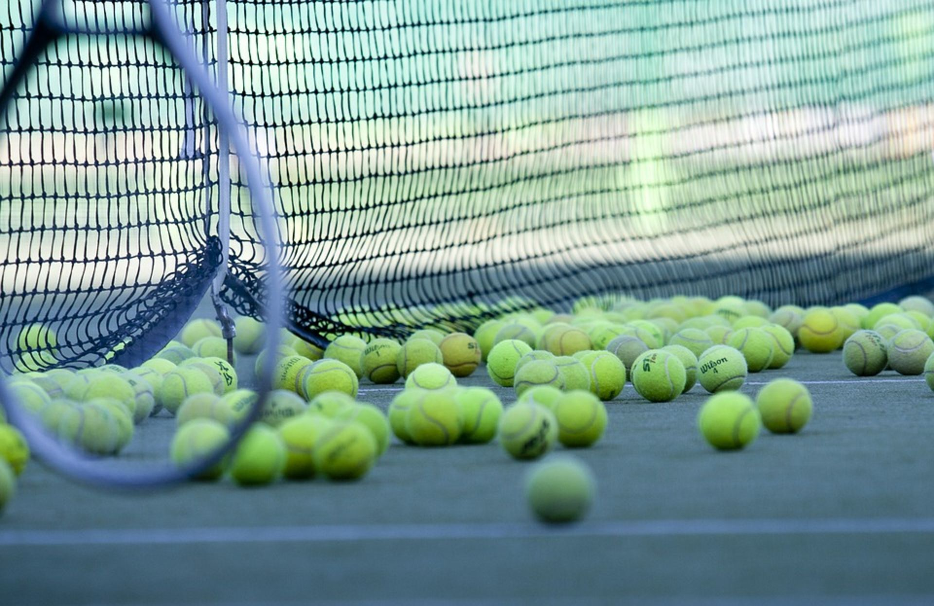 The 11 & Over Youth Tennis Tournament