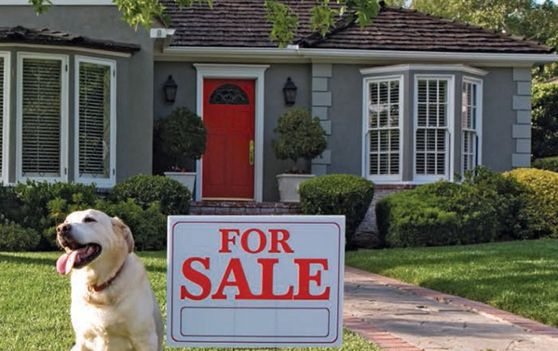 Should You Sell BEFORE You List?