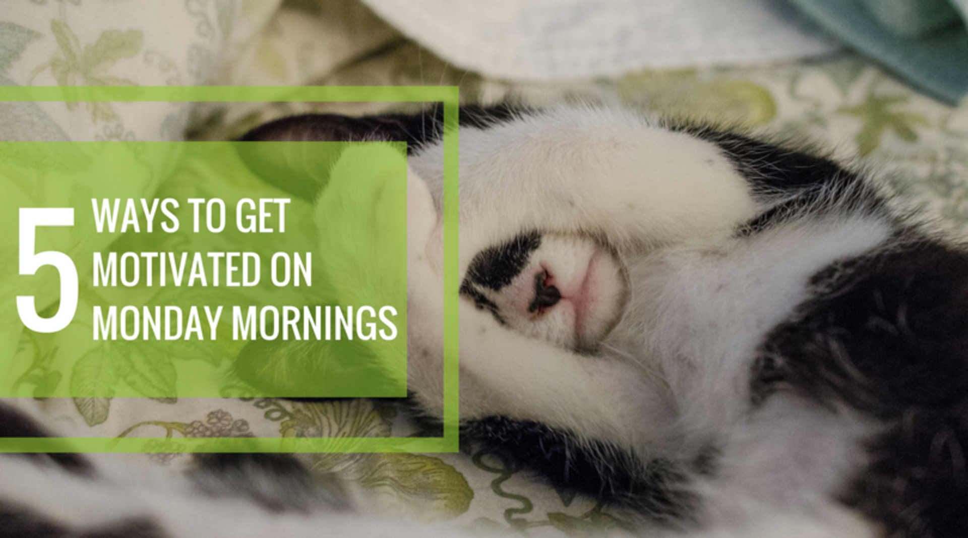 5 Ways to Get Morning Motivated!
