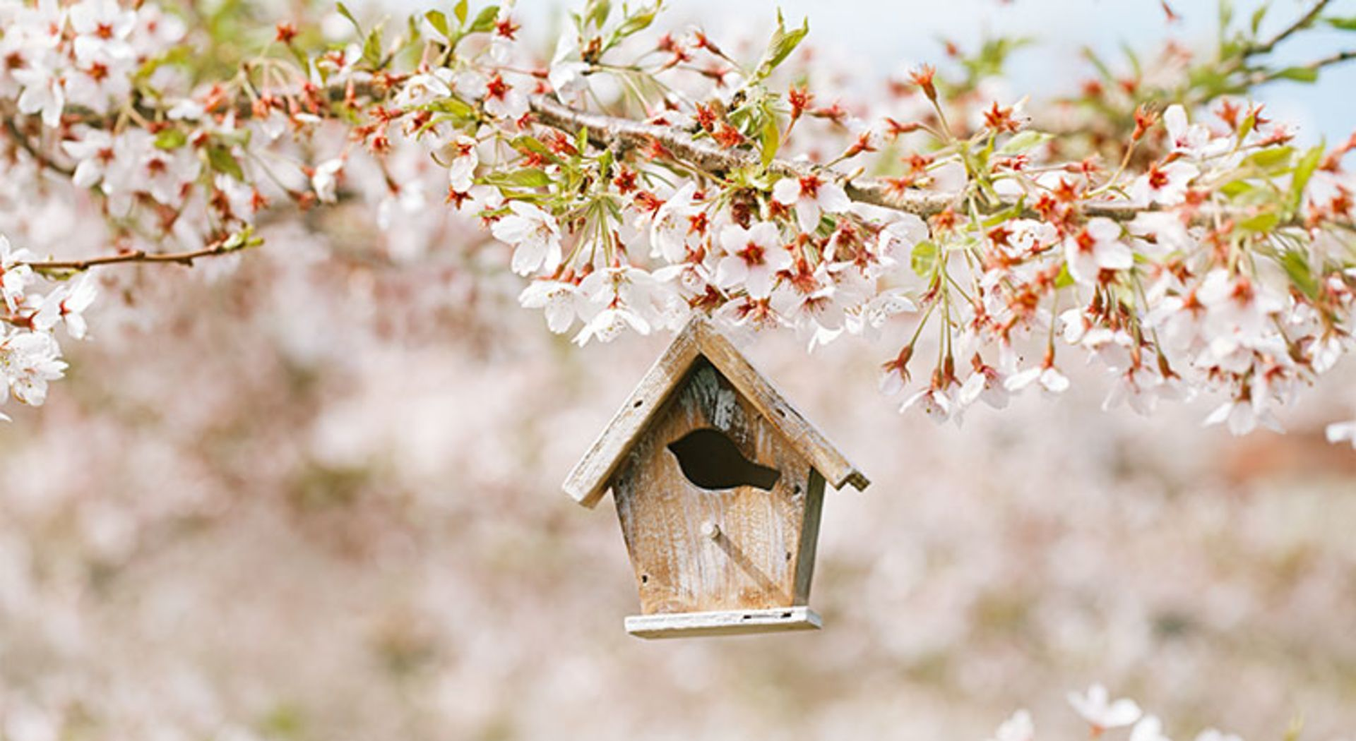 Listing your home in April is ideal