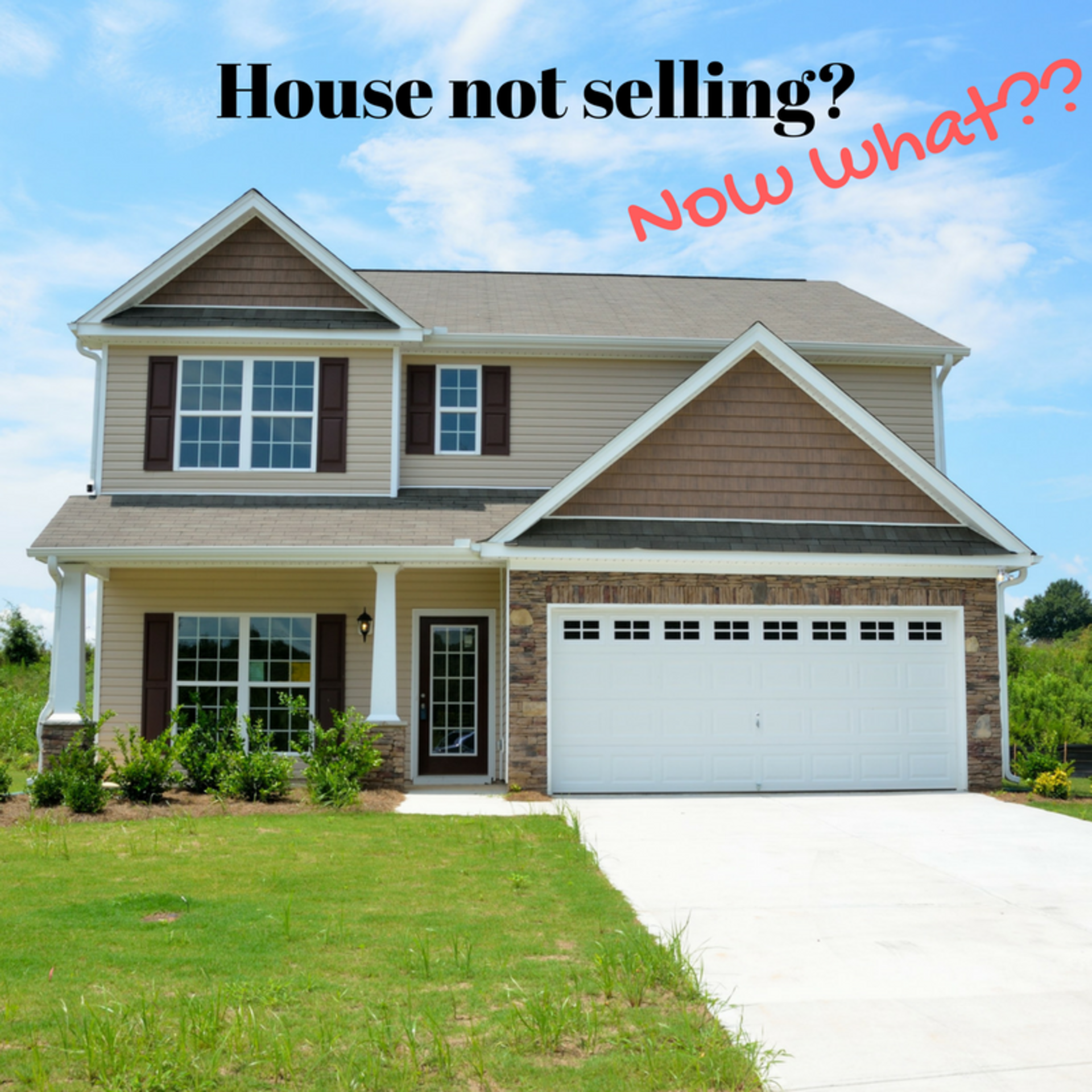 House not selling?  Now what?