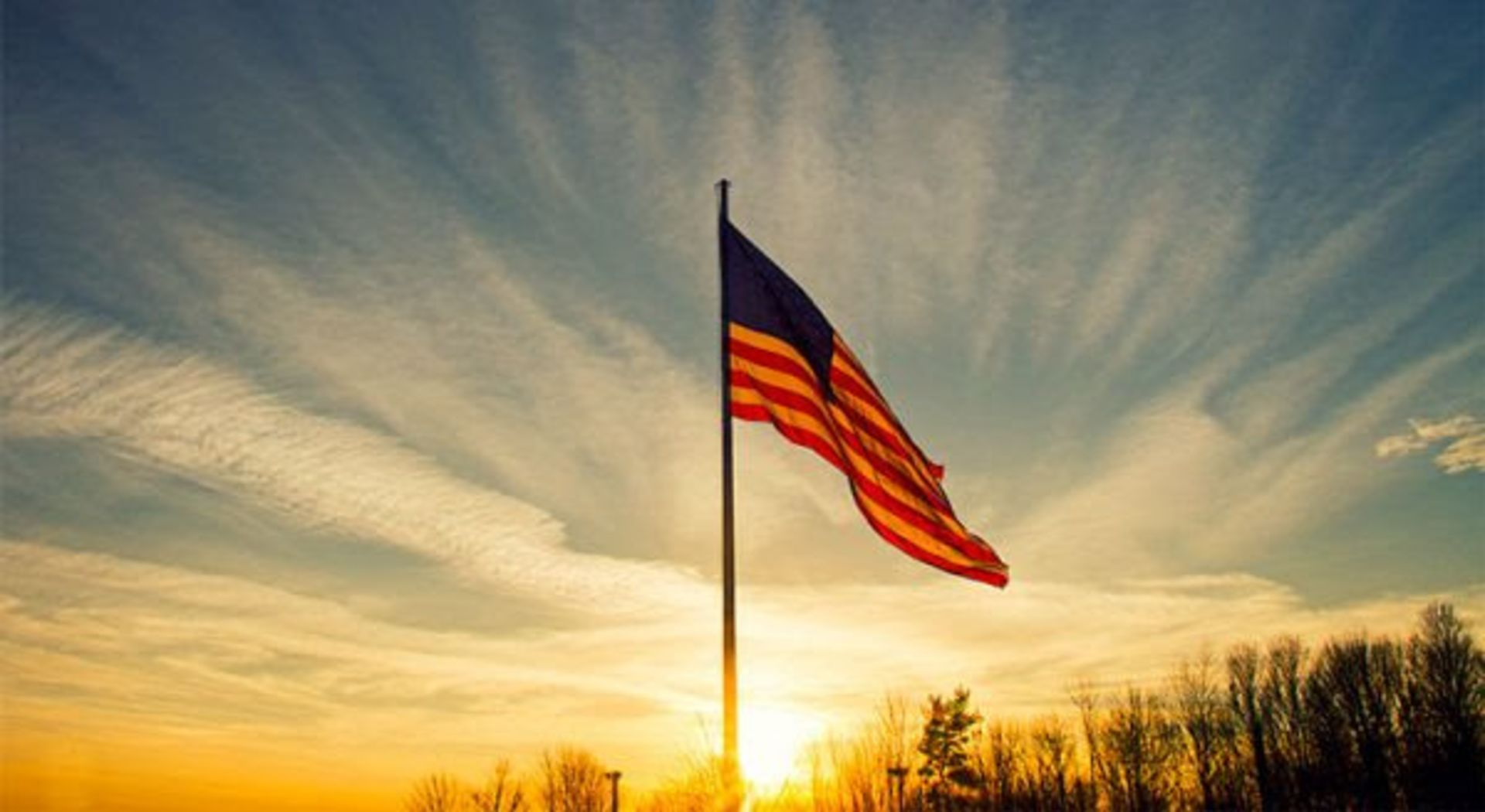 How to Honor a Veteran Today and Everyday
