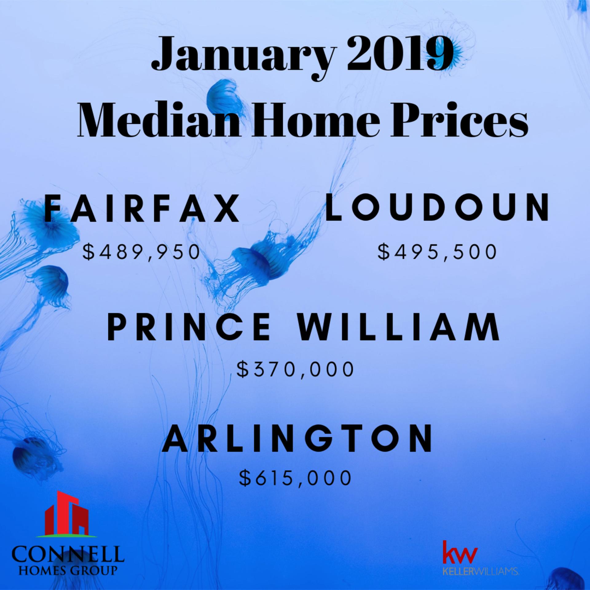 January 2019 Market Stats