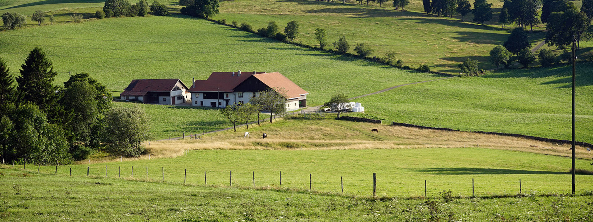 5 Tips for Selling Your Farm or Rance