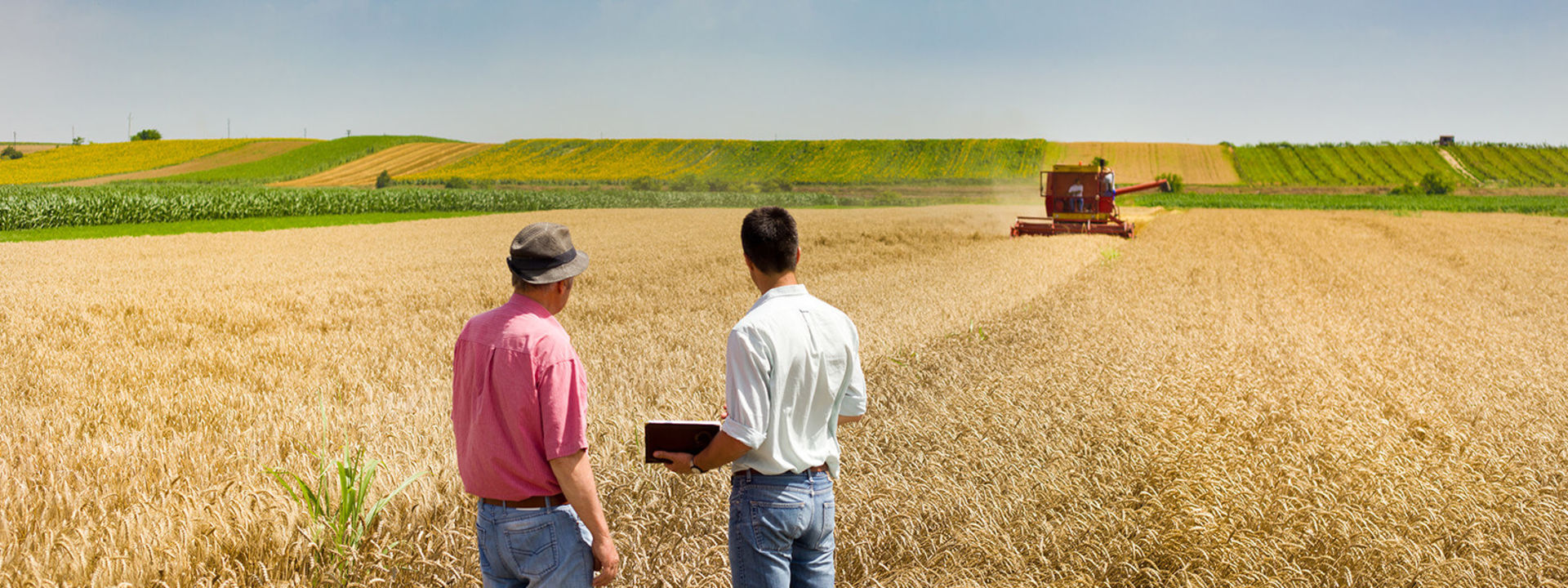 Questions to Ask Before Buying a Farm or Ranch