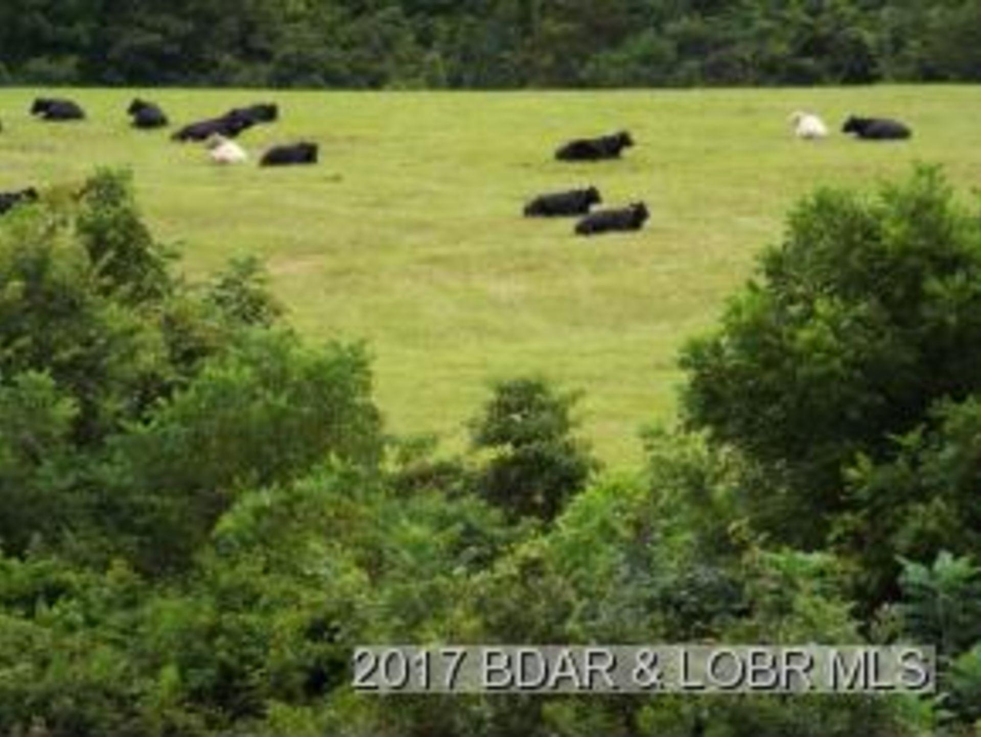 Stoutland Missouri Farm with registered cave for sale