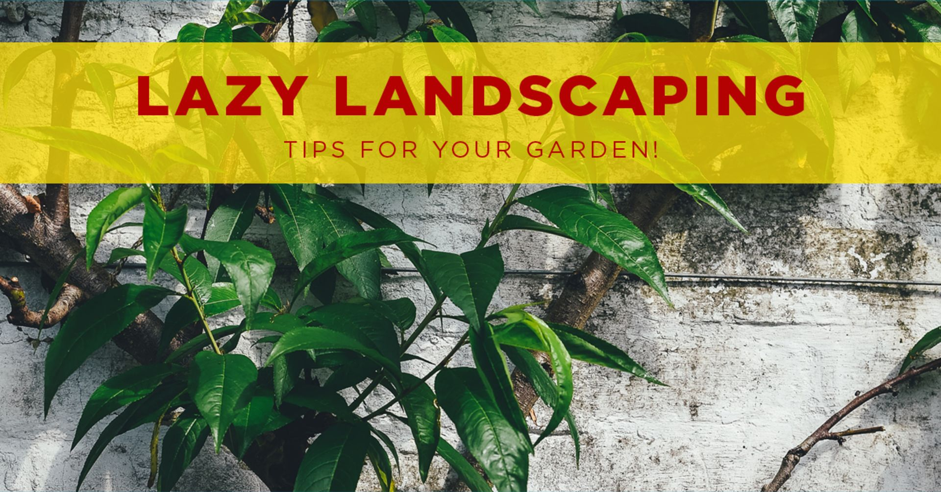 Lazy Landscaping Hacks