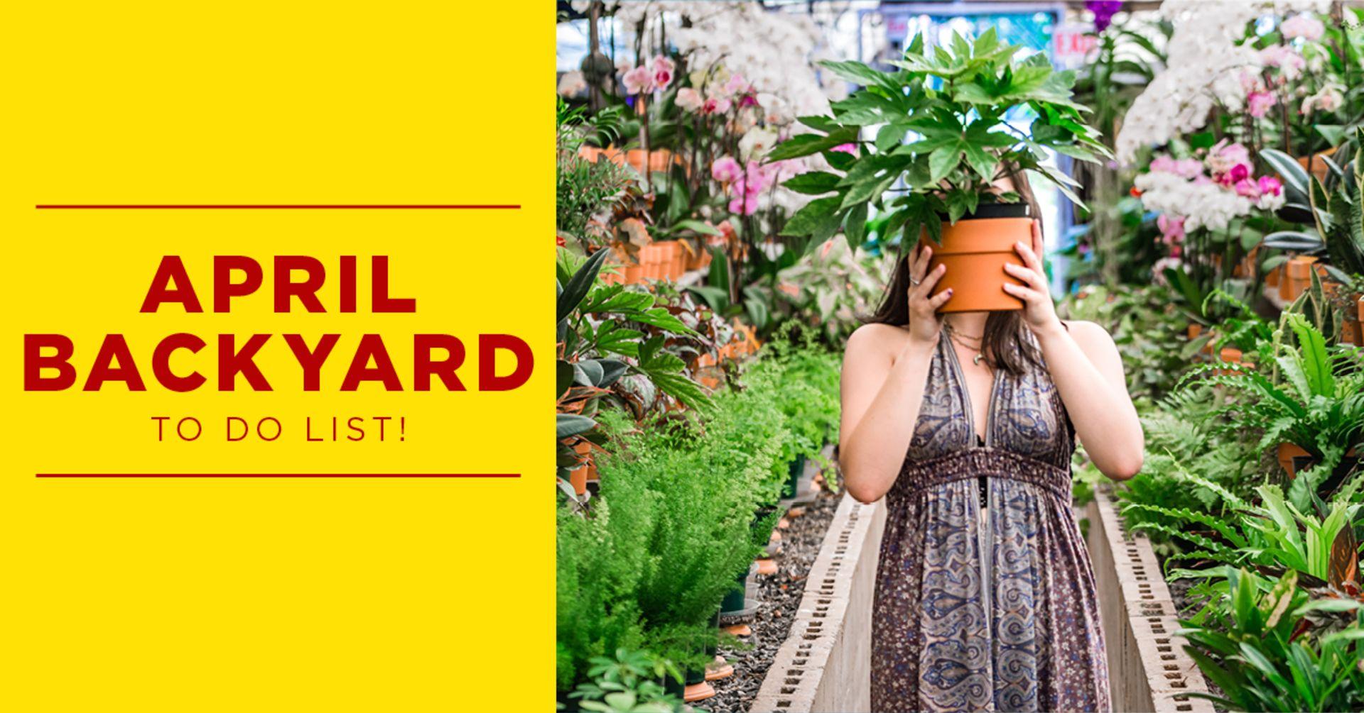 April Backyard to do List