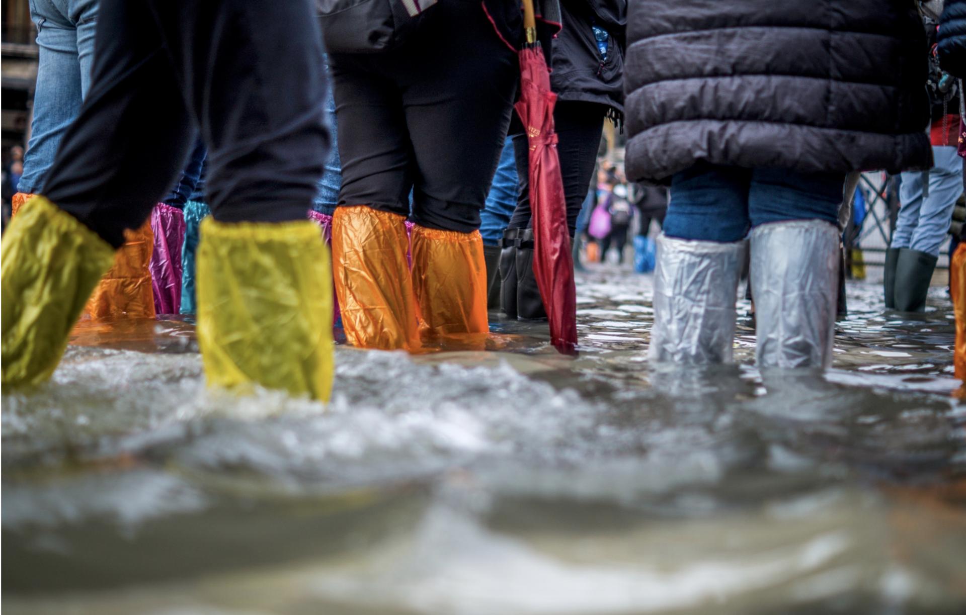 Prevent a Basement Flood