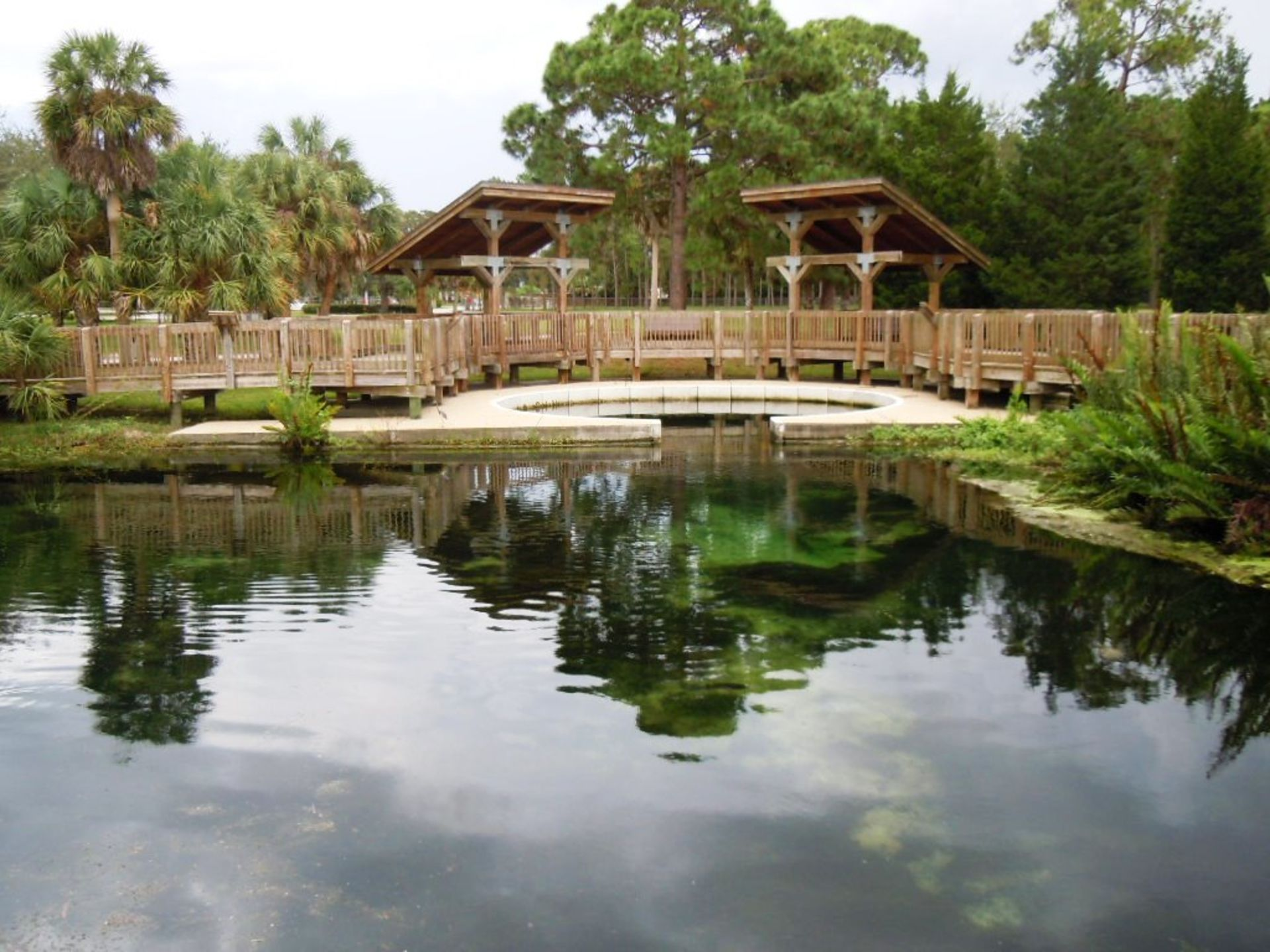 Free things to do in Dunedin and Palm Harbor