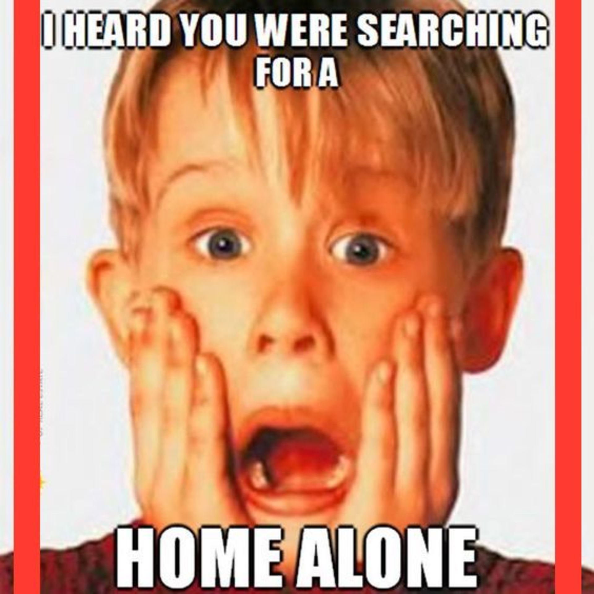 Not a home alone!!