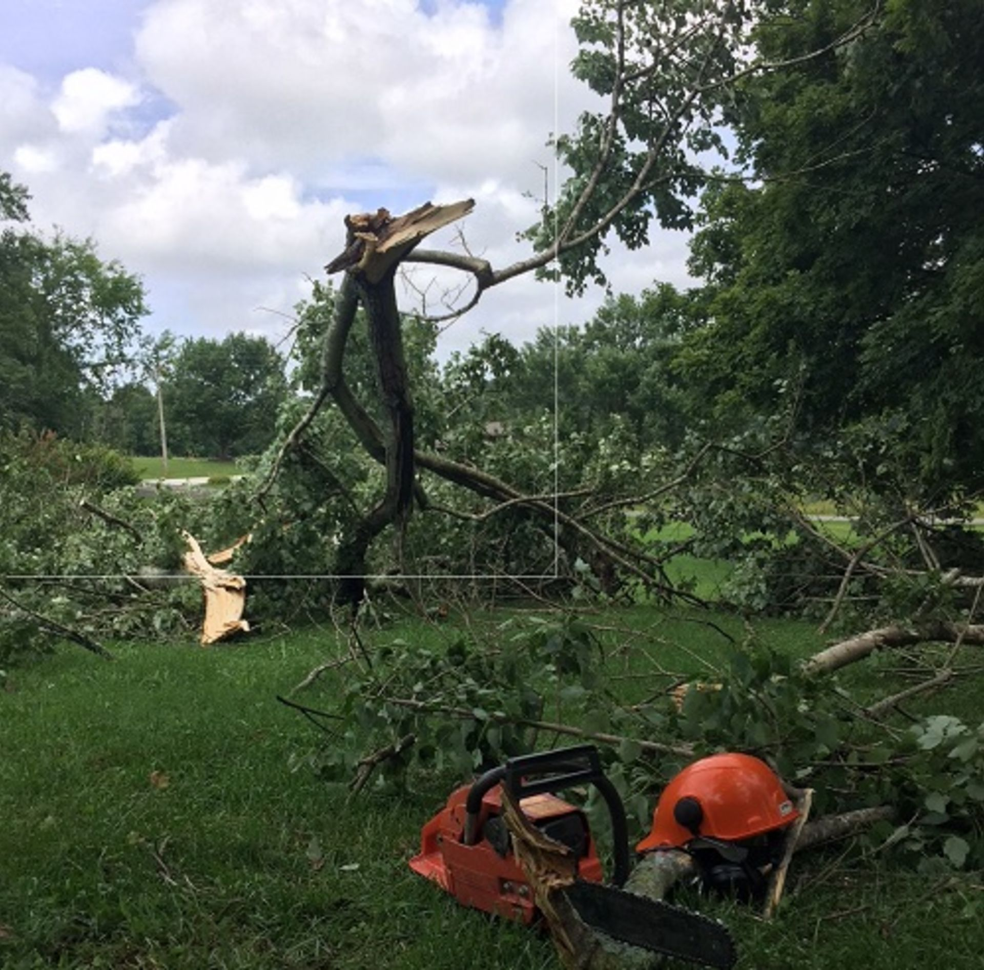 Tips for Storm Damage Clean-Up