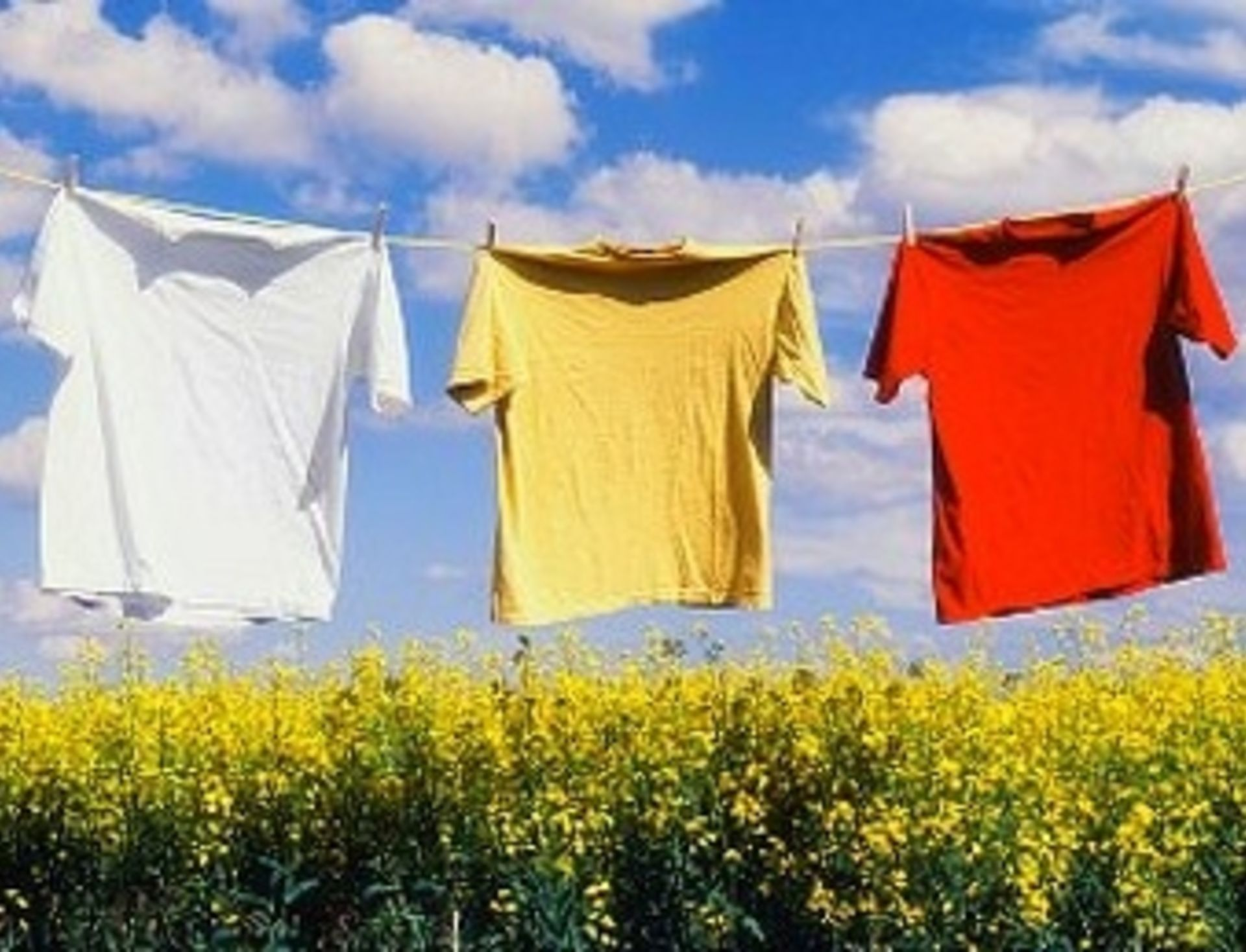 Clean out your Dryer