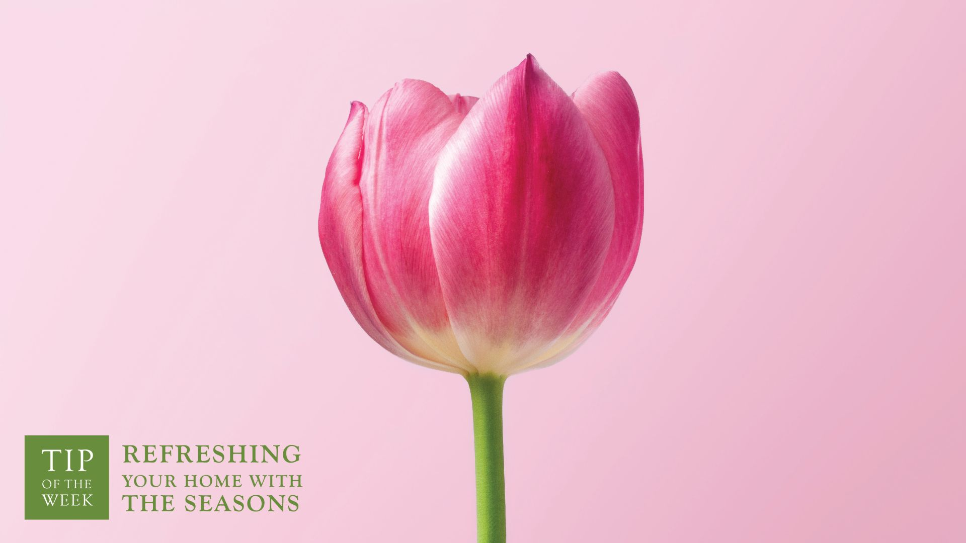 Refreshing Your Home With The Seasons