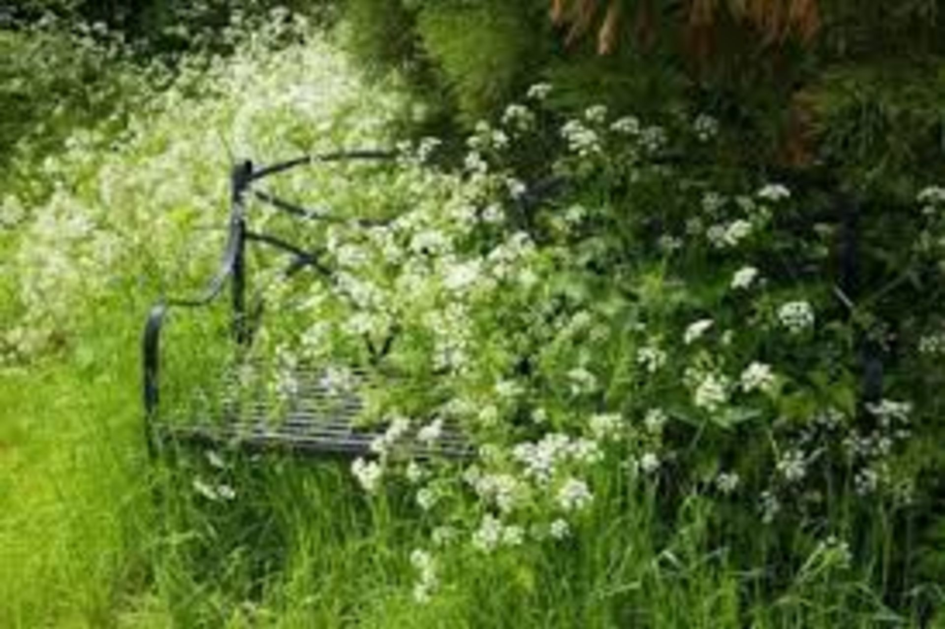Taming the Monster in Your Garden