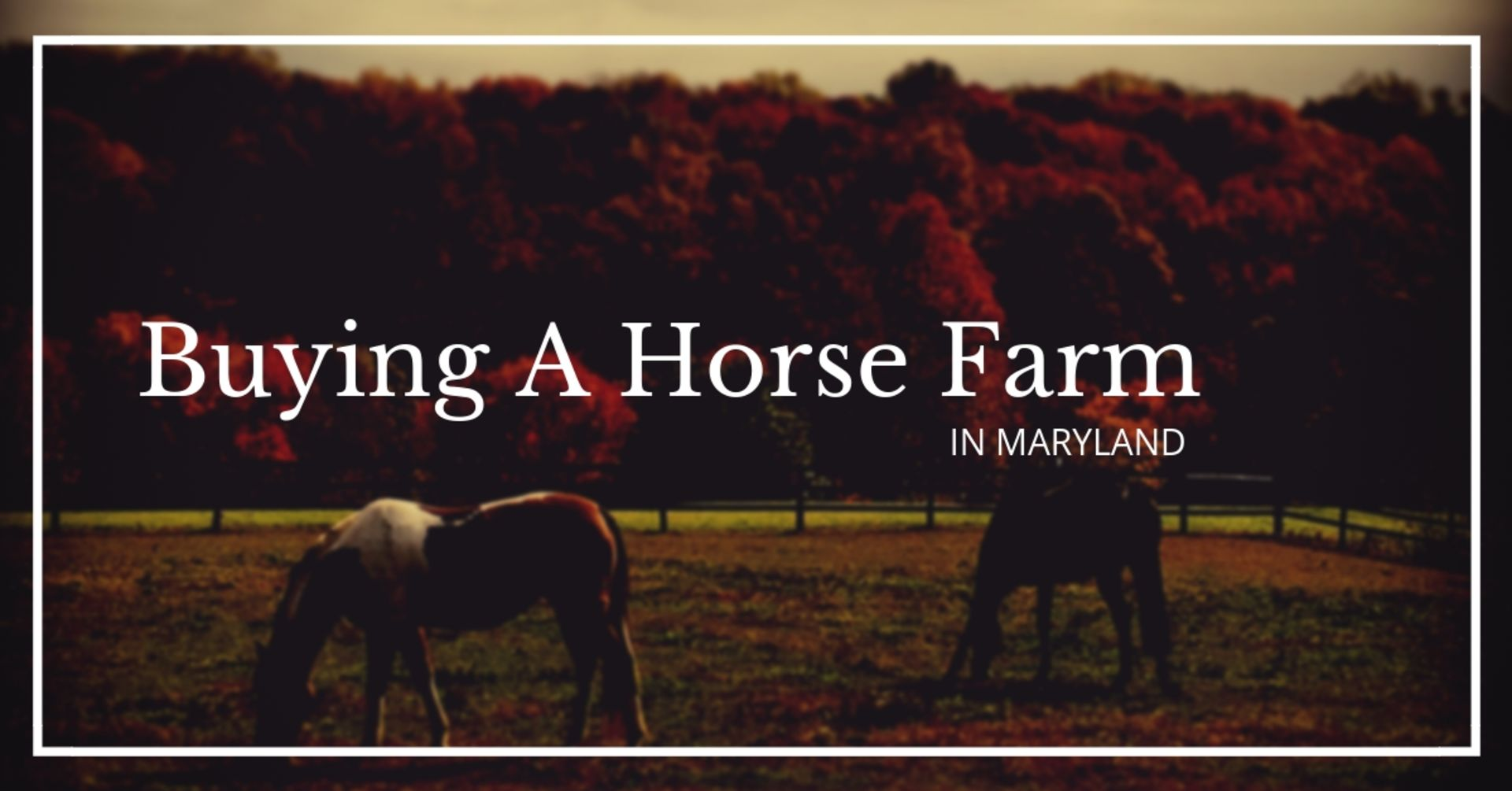 Buying A Horse Farm In Maryland