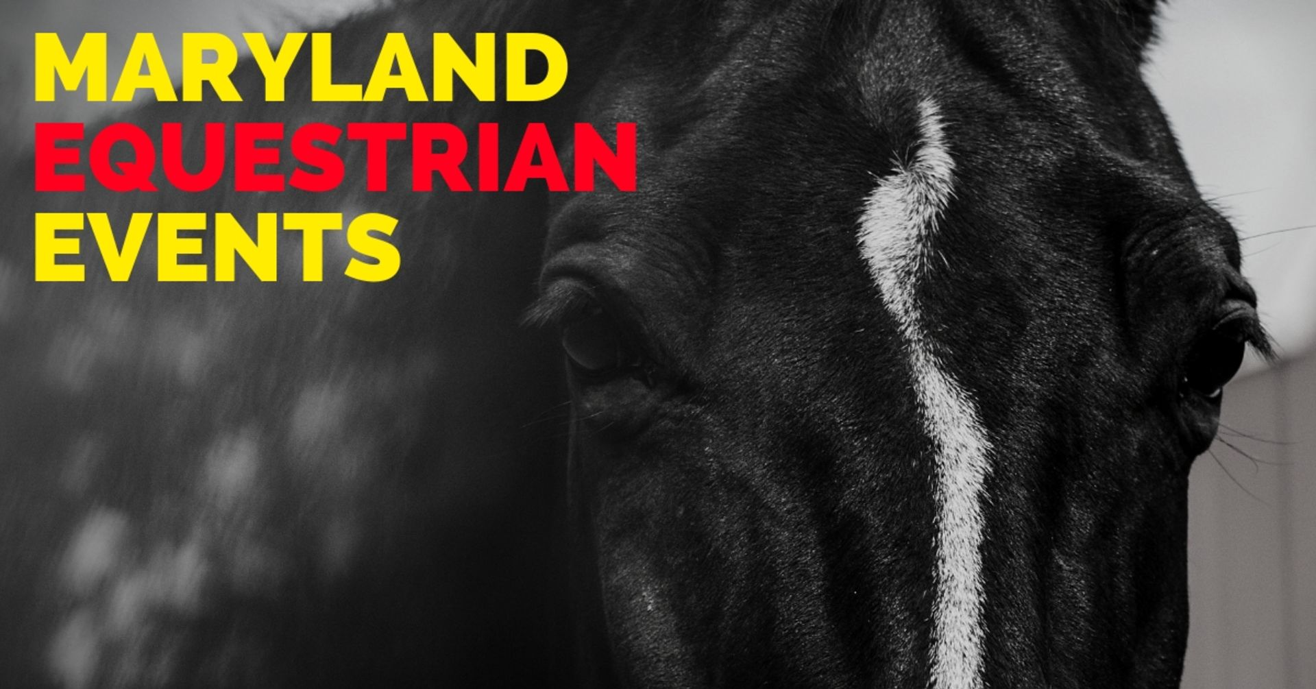 Maryland Equestrian Events