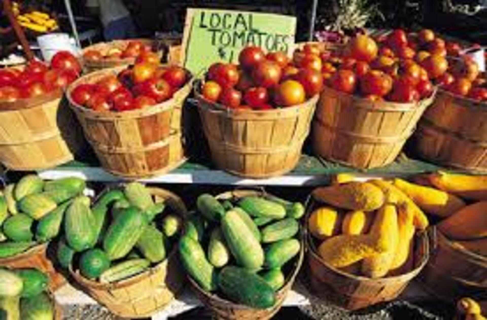 8 BEST GREEN MARKETS IN PALM BEACH COUNTY