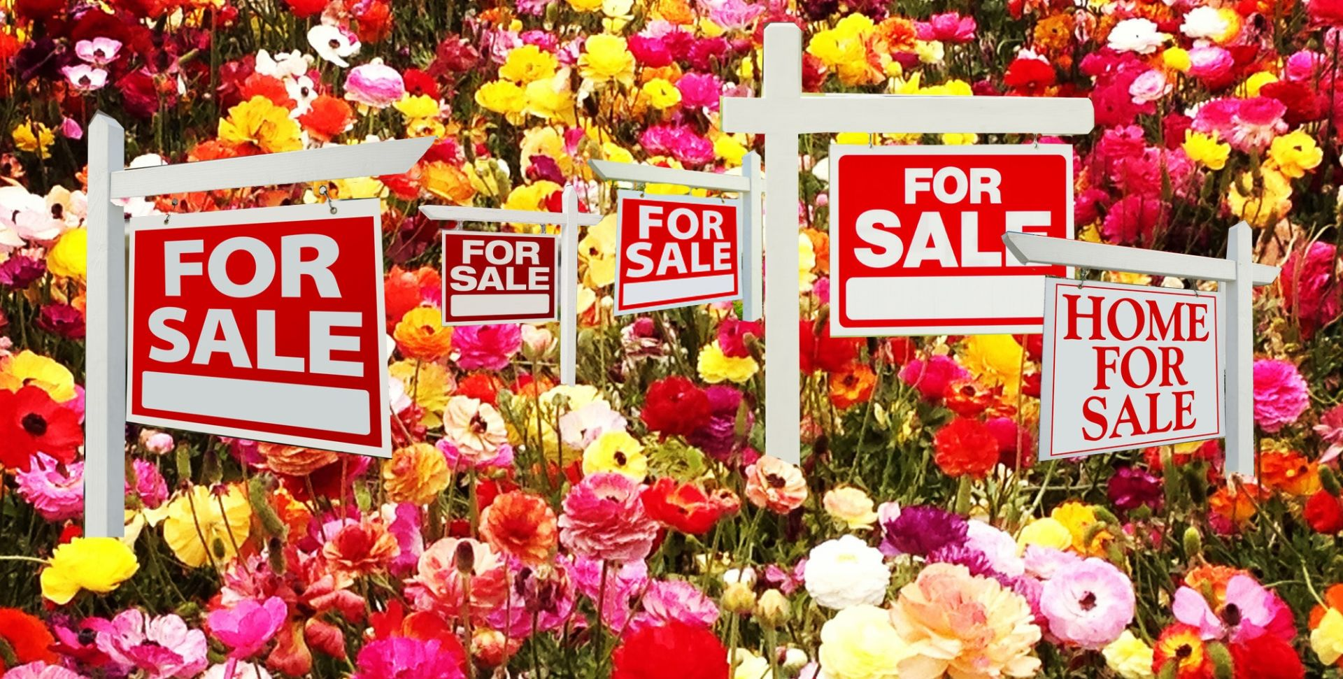 The spring housing market is off to the races!