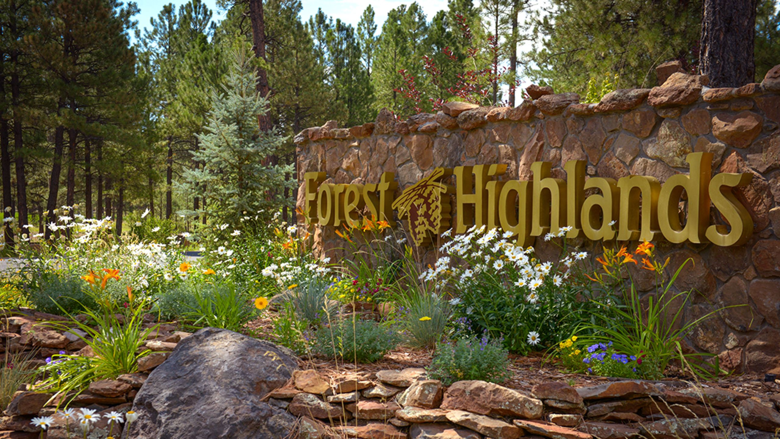 50 Things to do in Flagstaff
