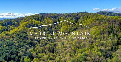 Merrill Mountain | 129 Acres For Sale | South Asheville NC