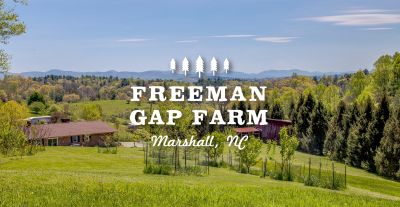 Freeman Gap Farm | 20 Acre Farm 5 Minutes from Marshall w/ Views!