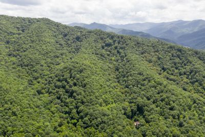 Haywood County | 84 Acres of Prime Mountain Land w/ Cabin