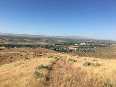 65 ACRES for prime Residential Lots in Prosser WA