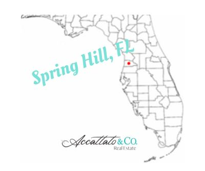 Living in Spring Hill, Florida