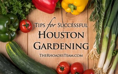 Tips for Successful Houston Gardening