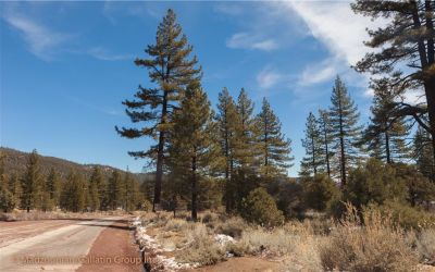 Cuddy Valley Land For Sale