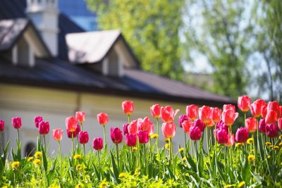 Why Spring Is the Perfect Time to Sell Your Home