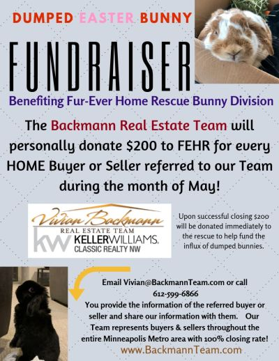 Backmann Team to donate $200 per closing to Fur-Ever Home Rescue Bunny Division