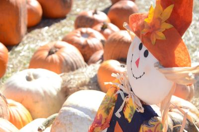 Scarecrows & Pumpkins & Flannel… Oh My!