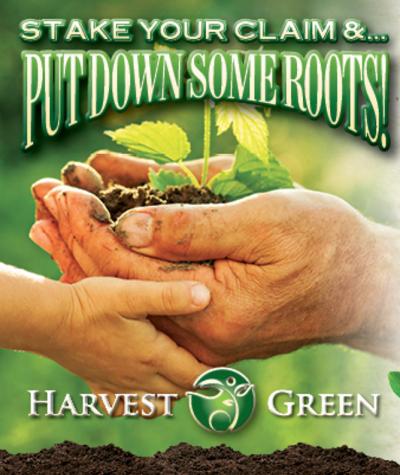 Harvest Green, Richmond's First Master Planned Agrihood Community