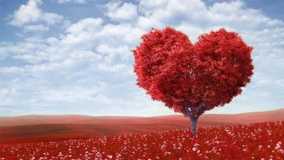 Lubbock Valentine's Festivities