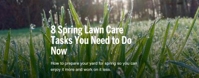 Pre-Spring Lawn Care Tips!