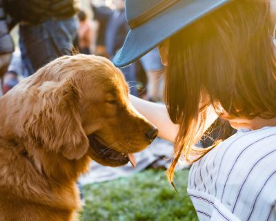 6 Pet-Friendly Places to Take Fido in North Scottsdale