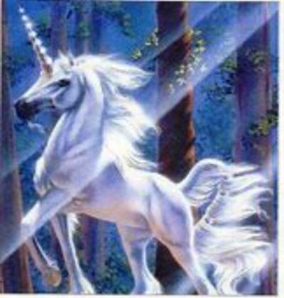 Unicorn in a Haystack.