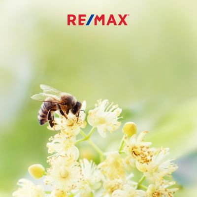 REMAX ON THE WATER OPEN HOUSE SUNDAY 7-14-2019