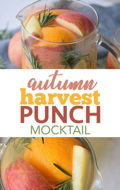 Featured Fall Recipes!