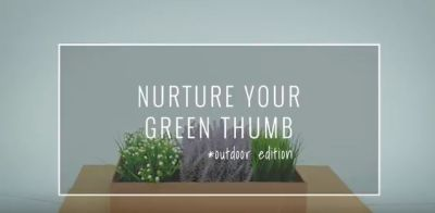 Nurture Your Green Thumb – outdoor