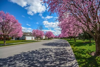 """What's """"Seasonal Thinking"""" for Twin Cities House Hunting?"""