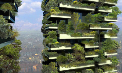 How plant-covered buildings improve urban life