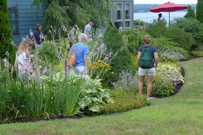 Belfast Open Gardens