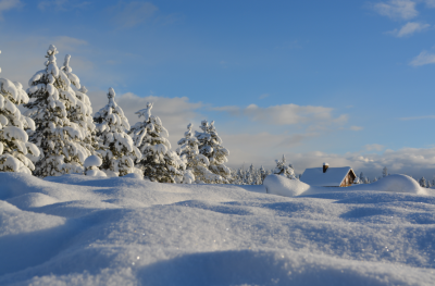 5 Things To Do Now If You're Selling Your Home This Winter